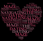 Navigating the Dating Maze an Interactive Workshop for Singles